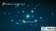 萝卜家园Windows11 大神装机版64位 2021.08